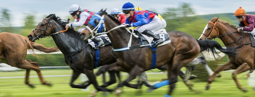 Australian Horse Racing Tips - 1-month FREE trial available